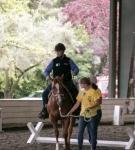 NCEFT-HorseShow-1-31