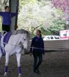 NCEFT-HorseShow-1-37