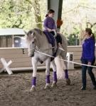 NCEFT-HorseShow-1-39