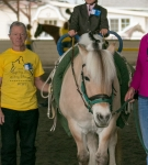 NCEFT-HorseShow-1-4
