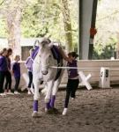 NCEFT-HorseShow-1-42