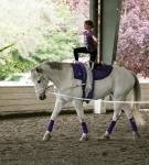 NCEFT-HorseShow-1-43