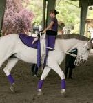 NCEFT-HorseShow-1-46