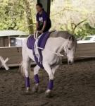 NCEFT-HorseShow-1-52