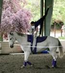 NCEFT-HorseShow-1-53