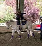 NCEFT-HorseShow-1-56