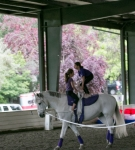 NCEFT-HorseShow-1-59