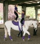 NCEFT-HorseShow-1-61