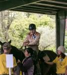 NCEFT-HorseShow-1
