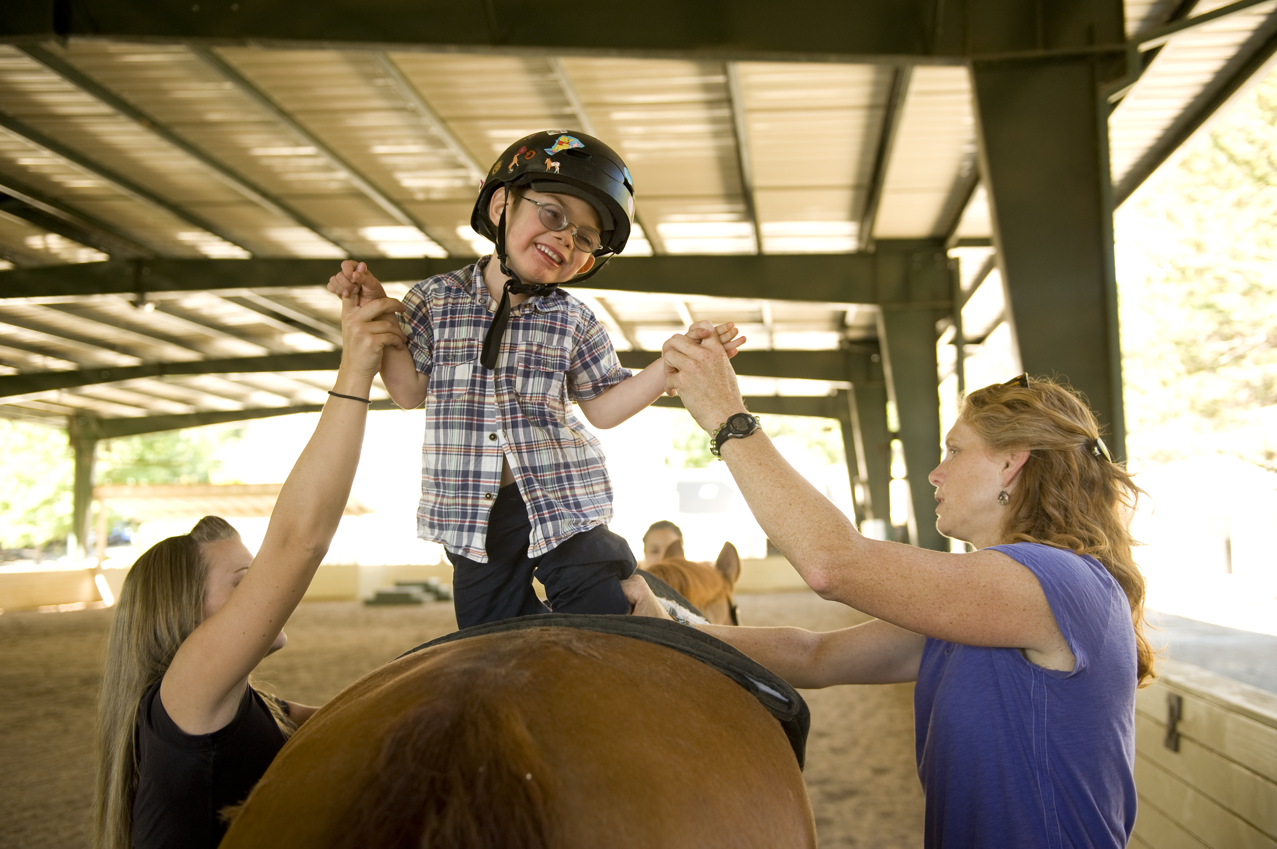 Horse equine physical therapy - Differences In Therapy Pt Ot And Speech