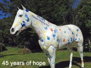 sprit-45-years-of-hope